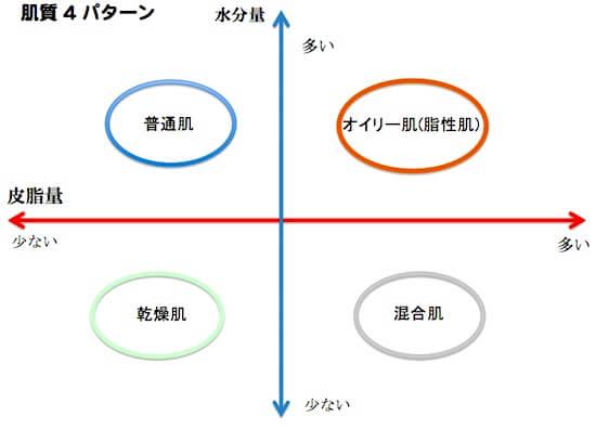 肌質4パターン図